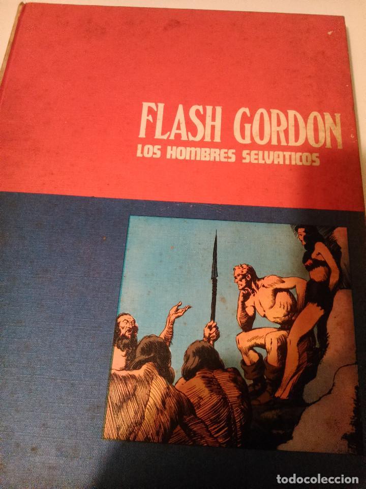 FLASH GORDON, LOS HOMBRES SELVÁTICOS (Tebeos y Comics - Hispano Americana - Flash Gordon)