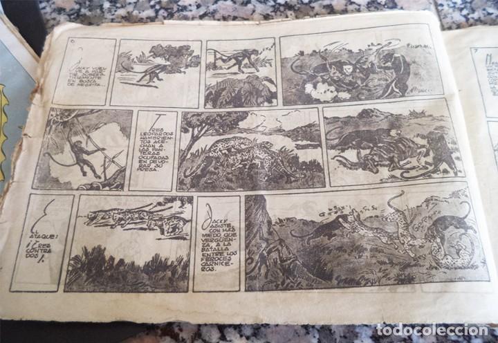 Tebeos: JORGE Y FERNANDO N.º 27 LA PANTERA NEGRA DE CABEZA BLANCA HISPANA AMERICANA ORIGINAL 1940 CON 4 ESTA - Foto 3 - 130364750