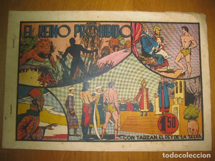 TARZAN EL REY DE LA SELVA. EL REINO PROHIBIDO. HISPANO AMERICANA DE EDICIONES. ORIGINAL. (Tebeos y Comics - Hispano Americana - Tarzán)