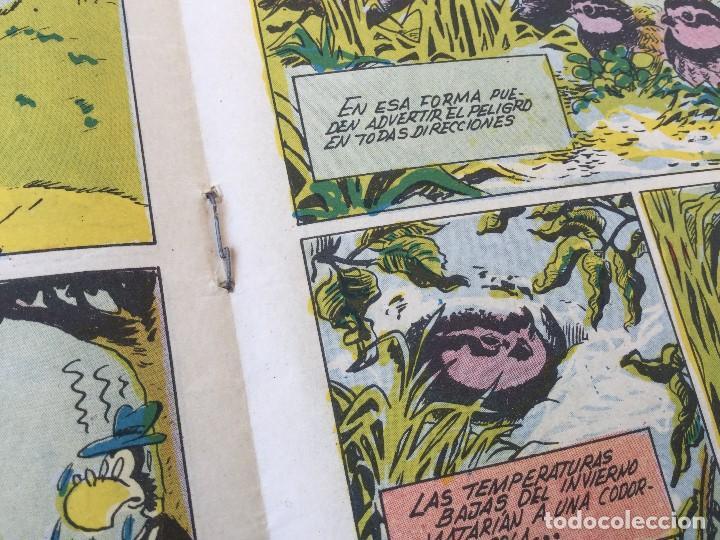 Tebeos: Revista Infantil Yumbo Nº 401 – Hispano Americana de Ediciones 1958 - Foto 12 - 154078081
