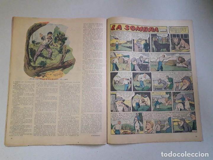 Tebeos: Tit Bits n° 2405 - La Sombra - Historieta original argentina año 1955 - Foto 5 - 184521586