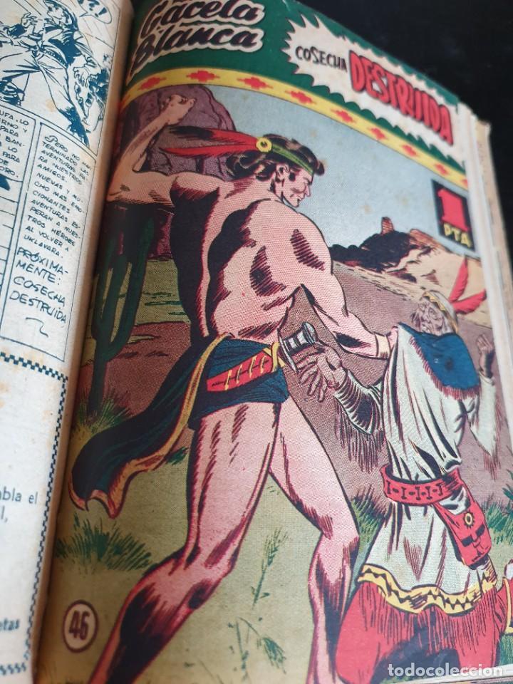 Tebeos: 1949 GACELA BLANCA -ORIGINAL- COMPLETA los 54 ejemplares - Foto 43 - 207229852