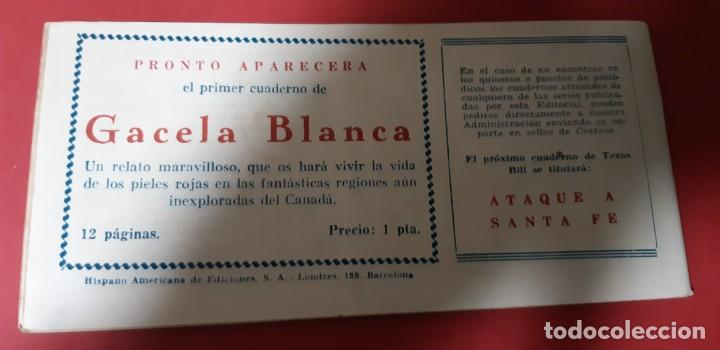 Tebeos: TEBEOS-COMICS CANDY - TEX WILLER - TEXAS BILL - COMPLETA - HISPANOAMERICANA 1949 - UNICA - UU99 - Foto 80 - 205257267