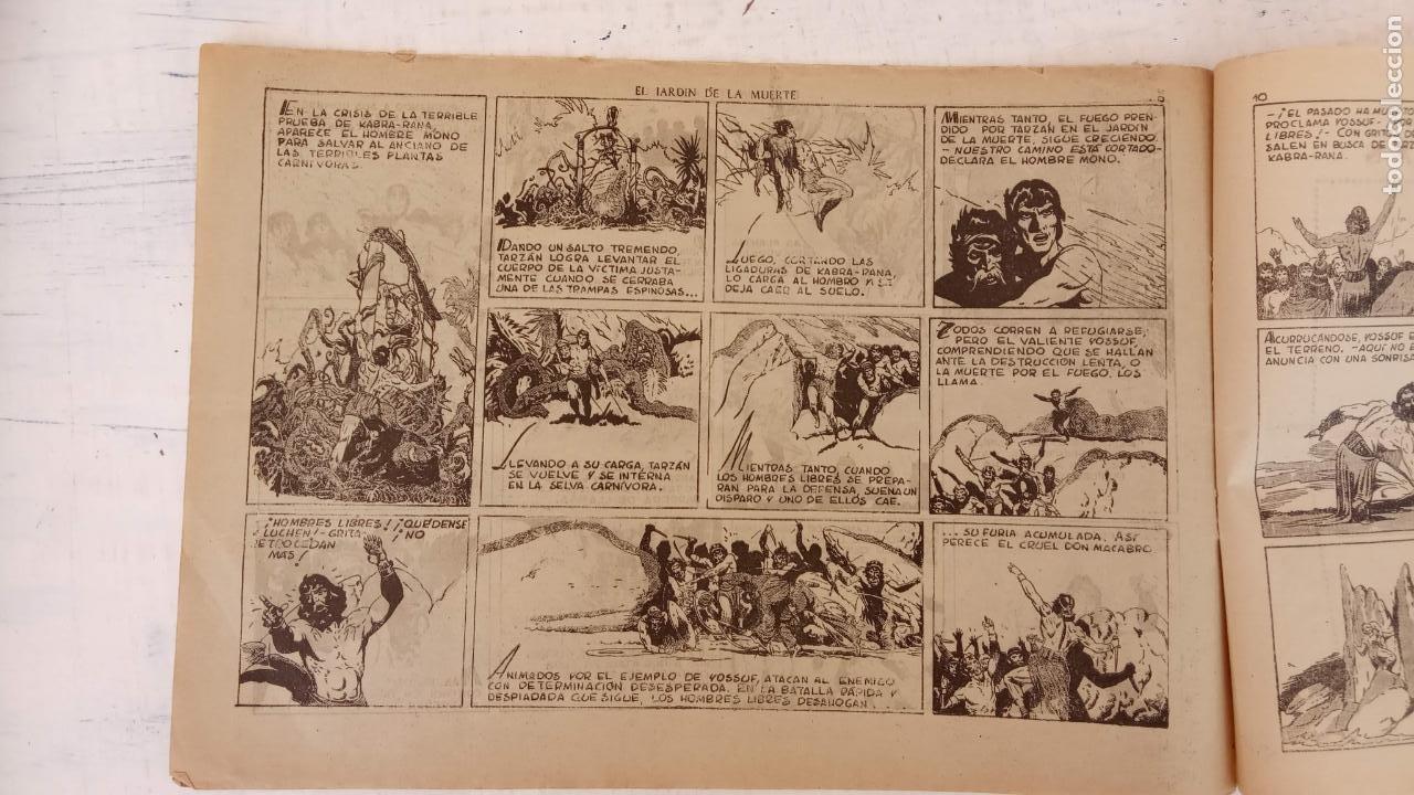 Tebeos: TARZAN EL HOMBRE MONO Nº 25 EL JARDIN DE LA MUERTE - ORIGINAL HISPANO AMERICANA - Foto 5 - 212303782