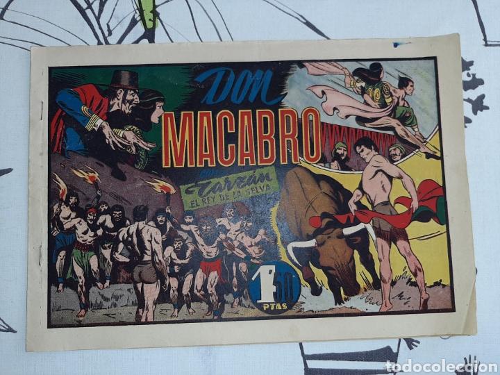 DON MACABRO, TARZÁN HISPANO AMERICANA ORIGINAL (Tebeos y Comics - Hispano Americana - Tarzán)
