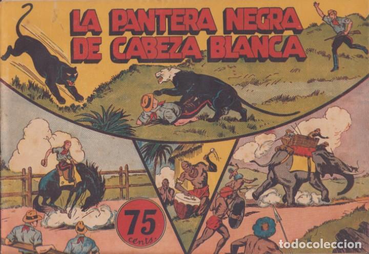 """COMIC JORGE Y FERNANDO EN""""LA PANTERA NEGRA DE CABEZA BLANCA""""HISPANO AMERICANA DE EDICIONES (75 CTMS) (Tebeos y Comics - Hispano Americana - Jorge y Fernando)"""