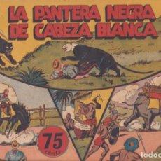"""BDs: COMIC JORGE Y FERNANDO EN""""LA PANTERA NEGRA DE CABEZA BLANCA""""HISPANO AMERICANA DE EDICIONES (75 CTMS). Lote 235596795"""