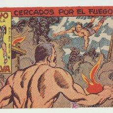 Tebeos: RAYO DE LA SELVA Nº 29. Lote 15114514