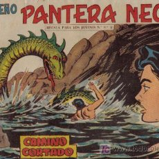 Tebeos: PEQUEÑO PANTERA NEGRA - Nº 181 - CAMINO CORTADO - EDITORIAL MAGA - ORIGINAL DE 1958.. Lote 16067178
