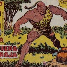 Tebeos: RAYO DE LA SELVA - Nº 20 - LA FIERA ROJA - EDITORIAL MAGA - ORIGINAL DE 1960. Lote 16092028