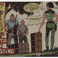 Tebeos: RAYO DE LA SELVA Nº 24.. Lote 17410774