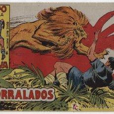 Tebeos: RAYO DE LA SELVA Nº 49. SIN ABRIR. Lote 17410860