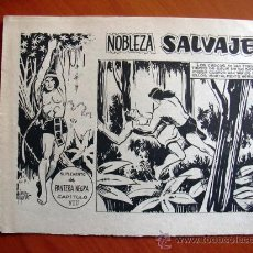 Tebeos: NOBLEZA SALVAJE Nº 8 - SUPLEMENTO DE LA REVISTA PANTERA NEGRA - EDITORIAL MAGA. Lote 18165566