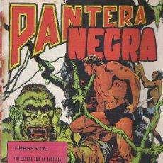 Tebeos: REVISTA PANTERA NEGRA LOTE DE 2 COMICS. Lote 22351494