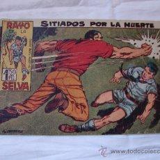 Tebeos: RAYO DE LA SELVA Nº 25 ORIGINAL. Lote 26356564
