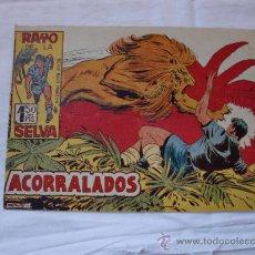Tebeos: RAYO DE LA SELVA Nº 49 ORIGINAL. Lote 26399465