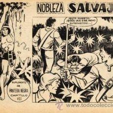 Tebeos: NOBLEZA SALVAJE Nº7 (SUPLEMENTO PANTERA NEGRA) DIBUJOS: PÉREZ FAJARDO. Lote 25630050