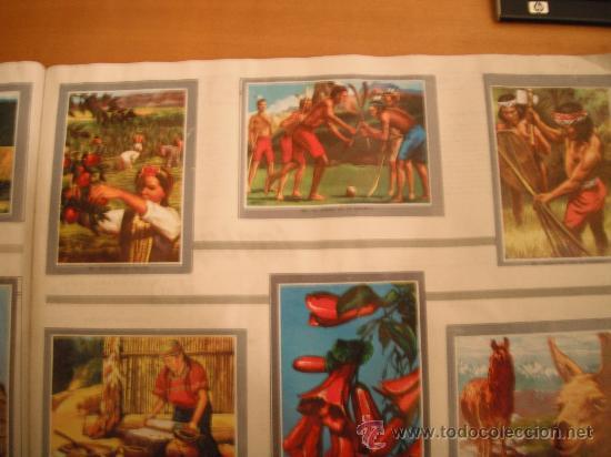 Tebeos: ALBUM MAGA. VIDA Y COLOR 2. 1968 - Foto 41 - 30251289