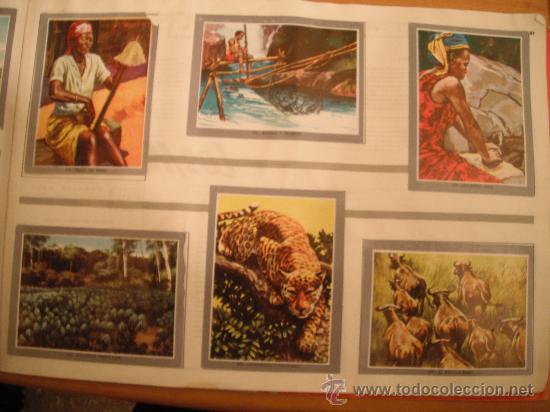 Tebeos: ALBUM MAGA. VIDA Y COLOR 2. 1968 - Foto 21 - 30251289