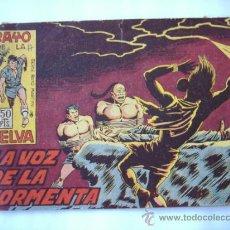 Tebeos: RAYO DE LA SELVA Nº36. Lote 31218949