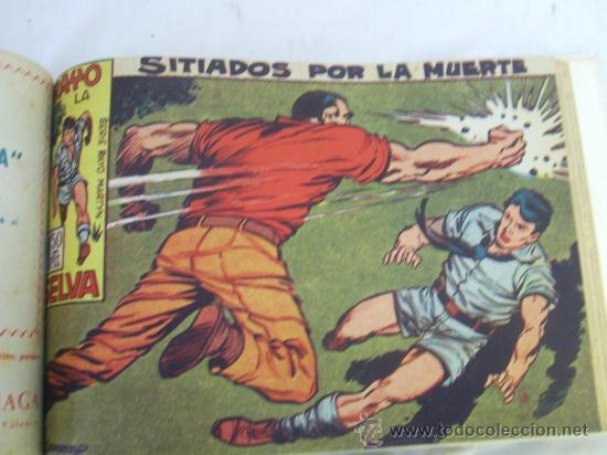 Tebeos: Rayo de la Selva. Colección encuadernada. Completa. En 2 tomos. - Foto 2 - 32061710