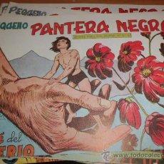 Tebeos: LOTE DE 10 COMICS PANTERA NEGRA 1 REPETIDO ED. MAGA. Lote 34547382