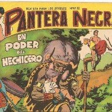 Tebeos: PANTERA NEGRA DE 2. PTAS. AÑO 1.964. Nº 53. ORIGINAL, MUY DIFICIL.. Lote 36143712