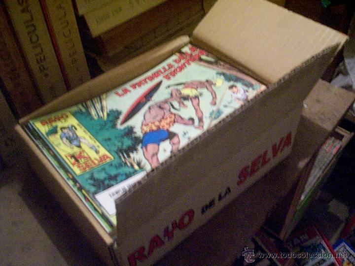 COLECCIÓN COMPLETA TEBEOS/CÓMIC RAYO DE LA SELVA SUELTOS NUEVOS MAGA 1960 Nº 1 A 83 (Tebeos y Comics - Maga - Rayo de la Selva)