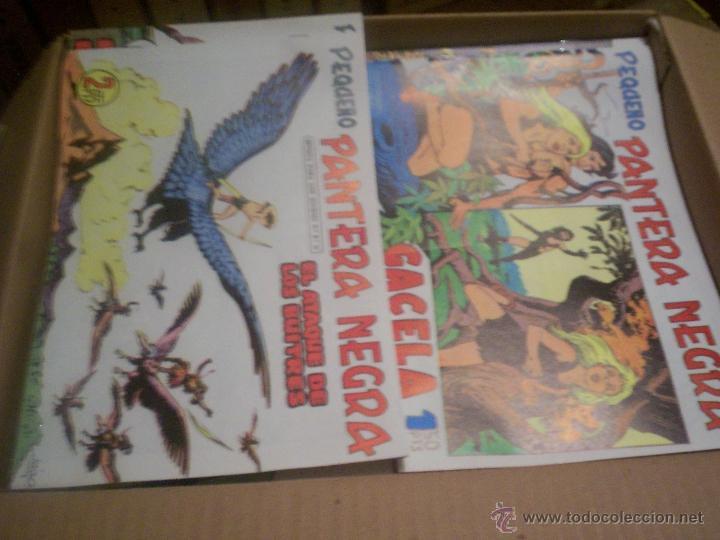 COLECCIÓN COMPLETA TEBEOS/CÓMIC EL PEQUEÑO PANTERA NEGRA SUELTOS NUEVO MAGA 1960 (Tebeos y Comics - Maga - Pantera Negra)