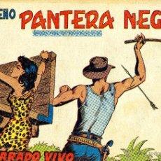 Tebeos: PEQUEÑO PANTERA NEGRA Nº251 (MIGUEL QUESADA) TEBEO ORIGINAL. Lote 41235748