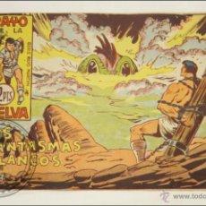 Giornalini: ANTIGUO CÓMIC - RAYO DE LA SELVA - 67. LOS FANTASMAS BLANCOS - EDITORIAL MAGA - 1960. Lote 43198217