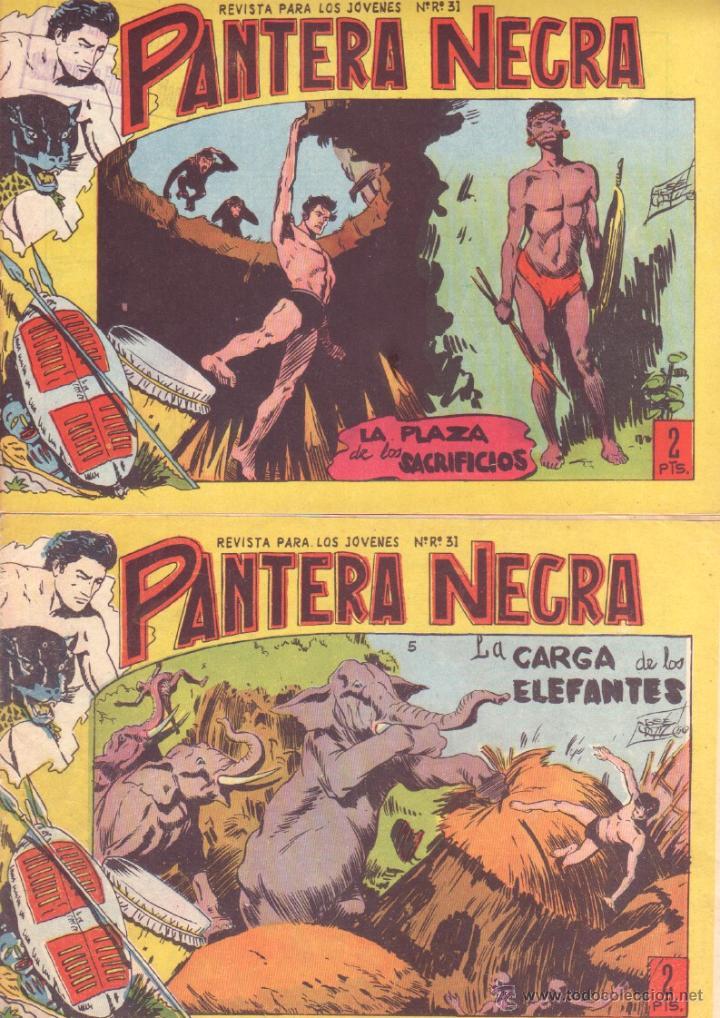 Tebeos: PANTERA NEGRA ORIGINAL EDITORIAL MAGA 1958 - 41 EJEMPLARES EN MUY BUEN ESTADO VER PORTADAS - Foto 2 - 48691437