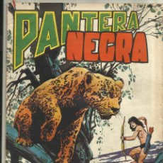 BDs: PANTERA NEGRA REVISTA Nº 39. Lote 49971991