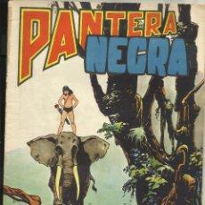 BDs: PANTERA NEGRA REVISTA Nº 40. Lote 49972002