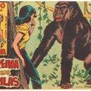 Tebeos: RAYO DE LA SELVA ORIGINAL Nº 12 EDITORIAL MAGA 1960, SIN ABRIR NI CIRCULAR, IMPECABLE. Lote 50142291