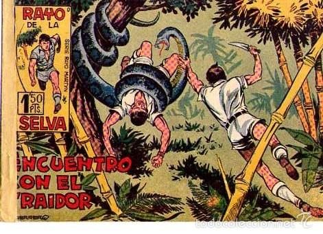 RAYO DE LA SELVA (MAGA) Nº 2 (Tebeos y Comics - Maga - Rayo de la Selva)