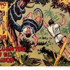 Livros de Banda Desenhada: RAYO DE LA SELVA (MAGA) Nº 2. Lote 55818783