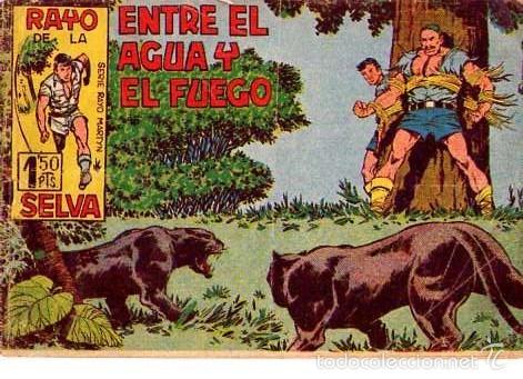 RAYO DE LA SELVA (MAGA) Nº 15 (Tebeos y Comics - Maga - Rayo de la Selva)
