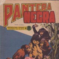 Tebeos: COMIC COLECCION PANTERA NEGRA REVISTA Nº 29. Lote 57883562