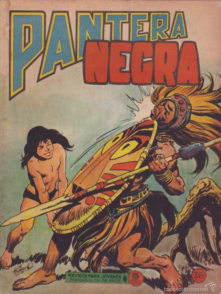 COMIC COLECCION PANTERA NEGRA REVISTA Nº 36 (Tebeos y Comics - Maga - Pantera Negra)