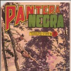 Tebeos: PANTERA NEGRA. REVISTA PARA JÓVENES. Nº 24. Lote 62198348