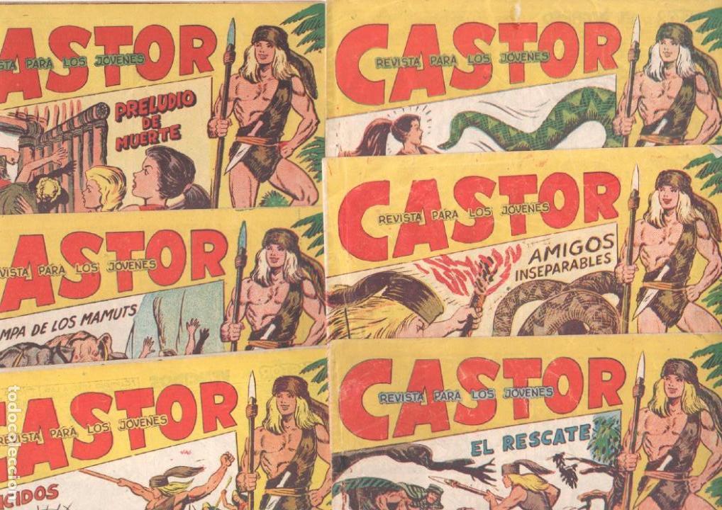 CASTOR COMPLETA ORIGINAL, EDI. MAGA 1962 - LOTE 41 TEBEOS, VER TODAS LAS PORTADAS (Tebeos y Comics - Maga - Otros)