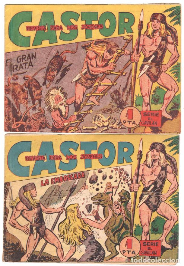 Tebeos: CASTOR COMPLETA original, EDI. MAGA 1962 - lote 41 TEBEOS, VER TODAS LAS PORTADAS - Foto 3 - 64186239