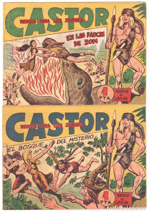 Tebeos: CASTOR COMPLETA original, EDI. MAGA 1962 - lote 41 TEBEOS, VER TODAS LAS PORTADAS - Foto 4 - 64186239