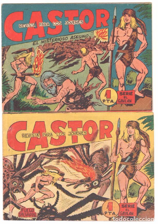 Tebeos: CASTOR COMPLETA original, EDI. MAGA 1962 - lote 41 TEBEOS, VER TODAS LAS PORTADAS - Foto 7 - 64186239