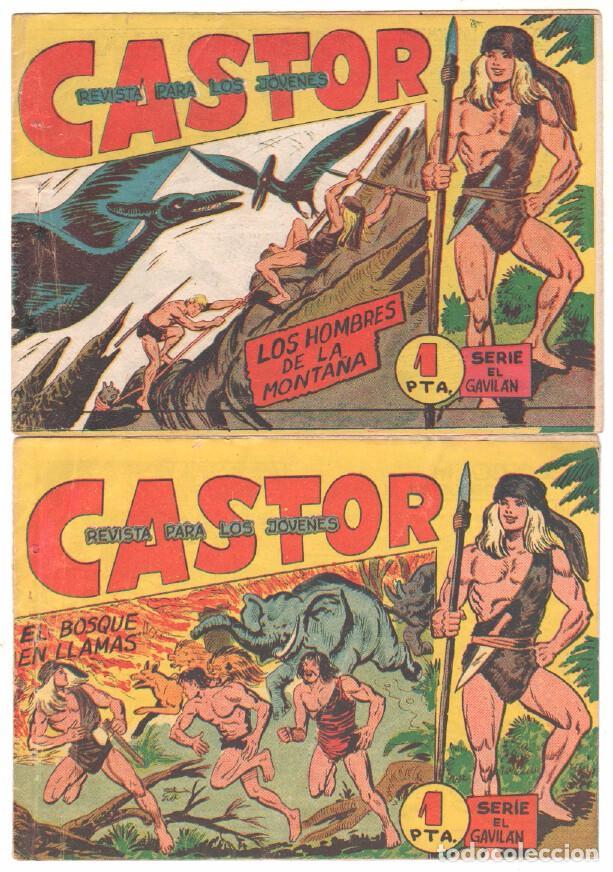 Tebeos: CASTOR COMPLETA original, EDI. MAGA 1962 - lote 41 TEBEOS, VER TODAS LAS PORTADAS - Foto 9 - 64186239