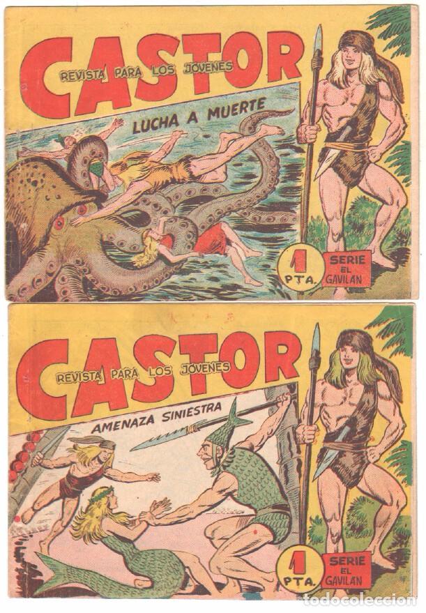 Tebeos: CASTOR COMPLETA original, EDI. MAGA 1962 - lote 41 TEBEOS, VER TODAS LAS PORTADAS - Foto 12 - 64186239