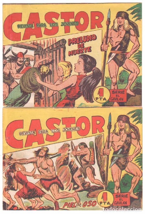 Tebeos: CASTOR COMPLETA original, EDI. MAGA 1962 - lote 41 TEBEOS, VER TODAS LAS PORTADAS - Foto 15 - 64186239