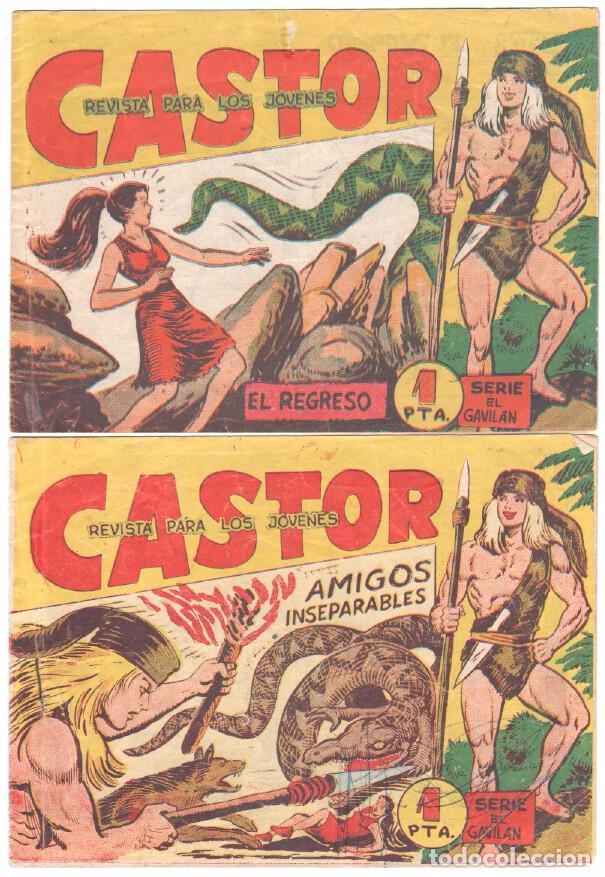 Tebeos: CASTOR COMPLETA original, EDI. MAGA 1962 - lote 41 TEBEOS, VER TODAS LAS PORTADAS - Foto 22 - 64186239