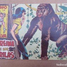 Tebeos: RAYO DE LA SELVA N. 12, LA REINA DE LOS GORILAS , MAGA 1960. Lote 84015800